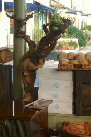 Driftwood sculpture in the window of my local Spanish deli, Photo credit Kelise Franclemont.