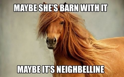 'Maybe she's barn with it..' Image courtesy Reddit. Designer unknown.