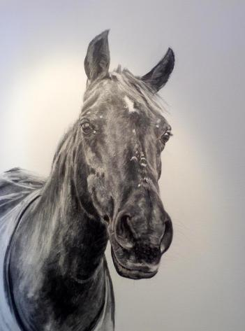Warren Heaton, 'Ricky', charcoal study for oil on canvas, in 'The Horse in Art' at Mall Galleries, London. Image courtesy the artist and http://www.equestrianartists.co.uk