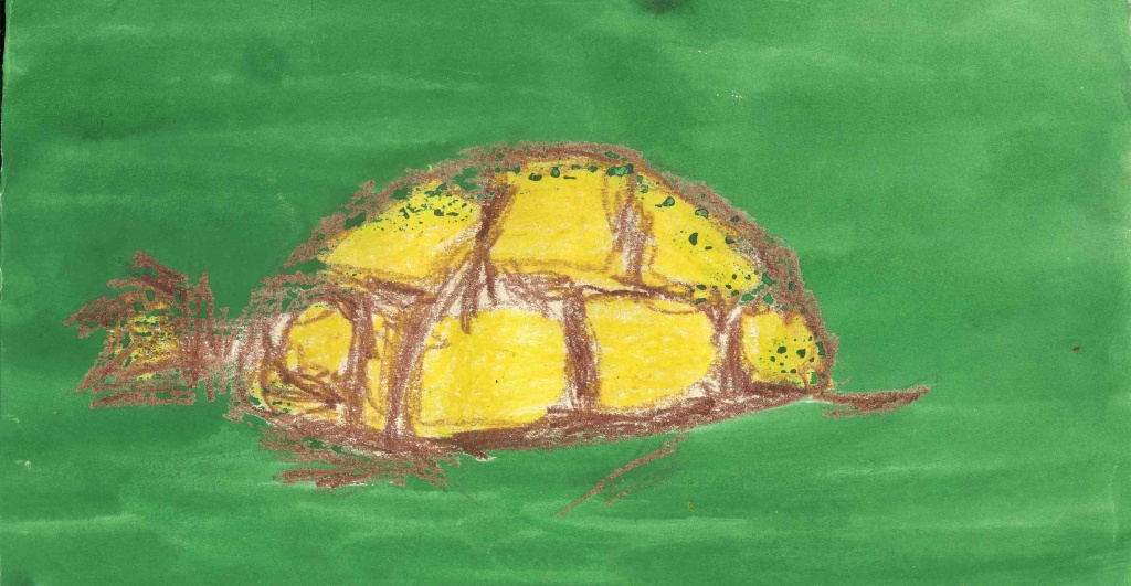 Kelise Franclemont, 'turtle', age 5, ink and wax crayon.